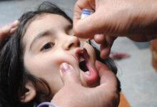 صورة وزارة الصحة تُطلق حملة التطعيم ضد شلل الأطفال اليوم