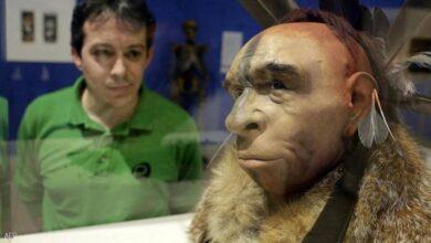"""صورة دراسة تحل لغزًا قديمًا عن الإنسان الأول """"نياندرتال"""""""