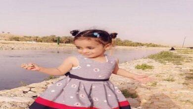"""صورة أمين الرياض يوجه بحصر مواقع الحيوانات الضالة.. بعد فاجعة """"الطفلة شهد"""""""