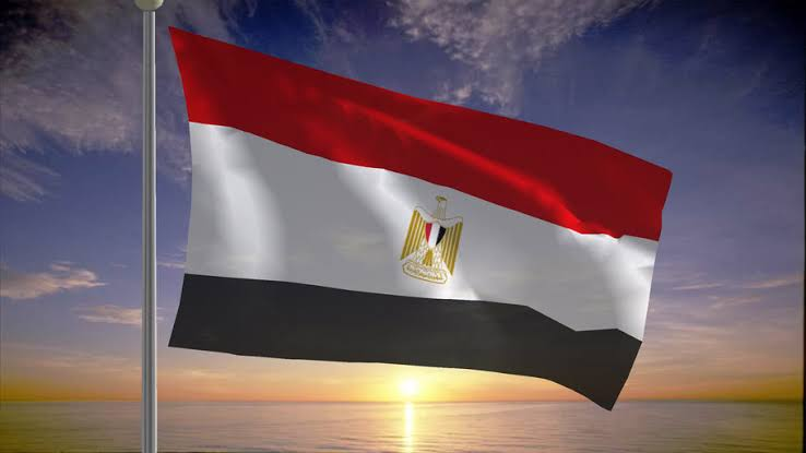 صورة مصر ترد بقوة على مزاعم انتهاكها حقوق الإنسان