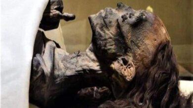 """صورة الكشف عن سر جمال شعر الملكة """"تي"""" رغم مرور آلاف السنين"""