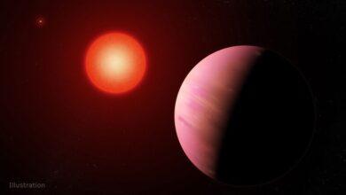 صورة فيديو.. اكتشاف 4 كواكب جديدة تُظهر شكل الأرض في بداياتها