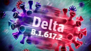 """صورة فيديو.. تعرف على أبرز أعراض الإصابة بفيروس """"متحور دلتا"""" الجديد"""