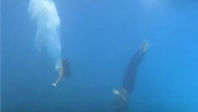 صورة فيديو.. ثنائي سعودي يحتفلان بزفافهما بطريقة غير تقليدية في المالديف تحت الماء
